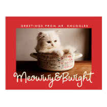 Funny Meowwy And Bwight Holiday | Photo Postcard