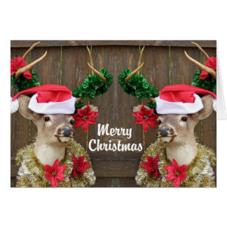 Whitetail Deer Christmas Cards - Greeting & Photo Cards ...