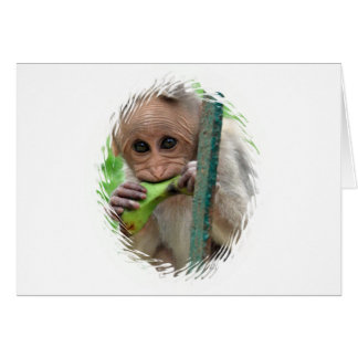 Funny Monkey Picture Greeting Card