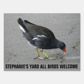 Funny Moorhen Take a Bow Custom Sign
