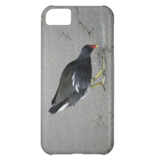 Funny Moorhen Take a Bow iPhone 5 Case