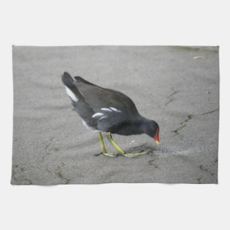 Funny Moorhen Take a Bow Kitchen Towel