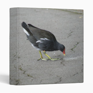 Funny Moorhen Take a Bow Photograph Album Binder
