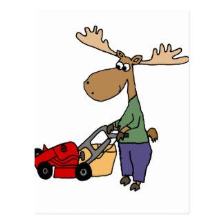 Funny Moose Mowing Lawn Cartoon Postcard