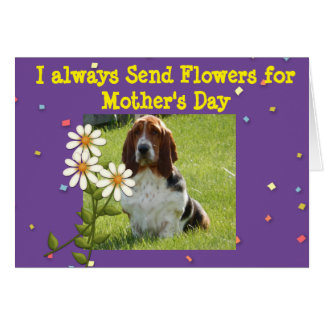 Funny Mother's Day Card with Basset and Flowers