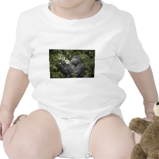 funny mountain gorilla eating flowers rompers