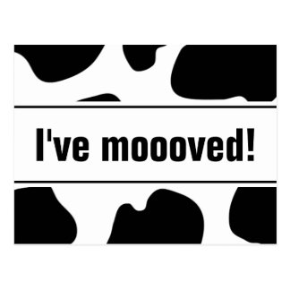 Funny moving postcards with cow print | i've moved