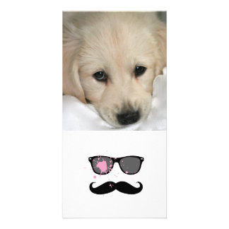 Funny Mustache and Sunglasses Photo Card