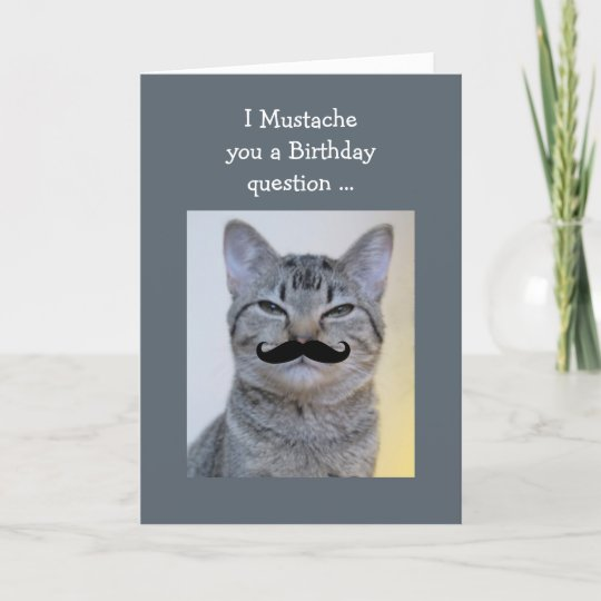 Funny Mustache Question Birthday Cat Card Zazzle