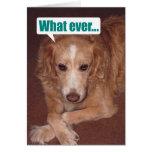 Funny Mutt with Atitude Birthday Card