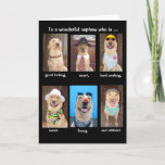 "Funny Nephew Birthday Card<br><div class=""desc"">Six pictures of Moses with the text ""To a wonderful nephew who is ...  good looking,  smart,  hard working,  sweet,  funny,  and athletic!""  You can customize for any male.</div>"