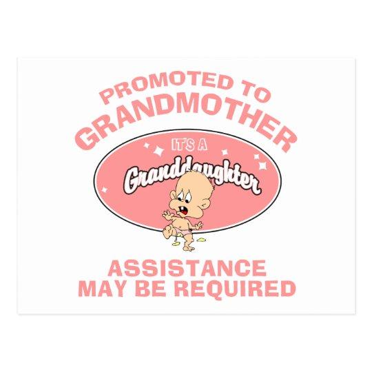 Funny New Grandmother New Granddaughter Postcard