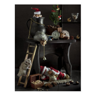 Funny New Year's still-life with hamsters Postcard