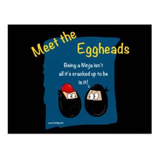 Funny Ninja cartoon gifts - eggheads by Leah Postcard