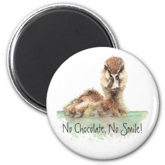 Funny, No Chocolate, No Smile, Angry Duck, Bird Refrigerator Magnets
