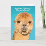 """Funny No Problama Llama Birthday Wisdom Card<br><div class=""""desc"""">This llama has the right idea about birthdays...  It's """"No prob-llama"""" (or no problemo). It's definitely not as bad as like """"The Alpaca-lypse"""" (or apocalypse). We could all use some punny humor like this on our birthdays. ;)</div>"""