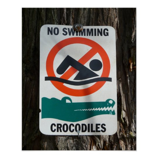 Funny NO SWIMMING Warning Sign