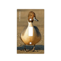 Funny Northern Pintail Duck Gothic Light Switch Cover