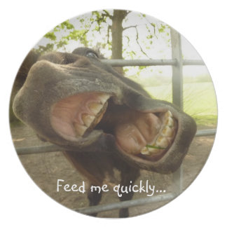 Funny Open Mouthed Donkey Plate - Feed Me Quickly