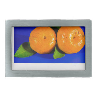 Funny Oranges Design Rectangular Belt Buckle