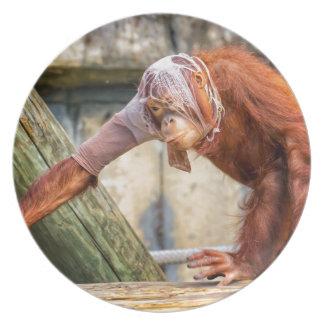 Funny Orangutan Party Plates