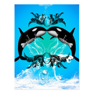Funny orcas with water splash postcard