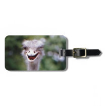 Funny Ostrich Bag Tag
