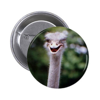 Funny Ostrich Button
