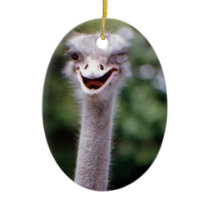 Funny Ostrich Ceramic Ornament