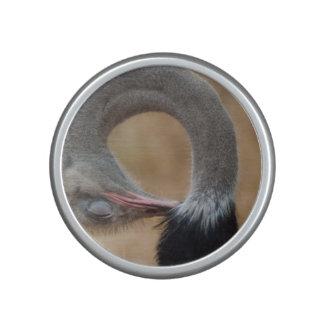 Funny Ostrich full neck curl picture Bluetooth Speaker