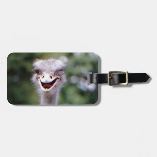 Funny Ostrich Tag For Bags