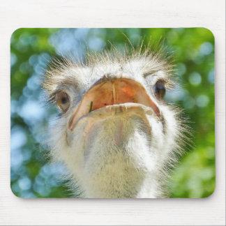 Funny Ostrich Portrait Mousepad