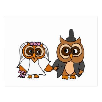 Funny Owl Bride and Groom Wedding Postcard