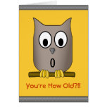 Funny Owl Over The Hill  What a Hoot Birthday Greeting Cards