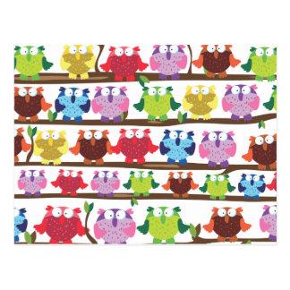 Funny Owls sitting on a brach pattern Postcard