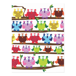 Funny Owls sitting on a branch pattern Postcard