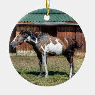 Funny Paint Pinto Grinning Horse Photo Bomb Ceramic Ornament