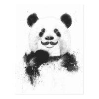 Funny panda postcard