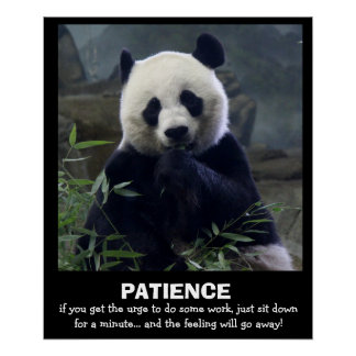 Funny Panda Poster, PATIENCE Poster