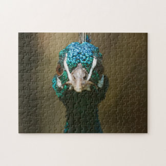 Funny Peacock Portrait Jigsaw Puzzles