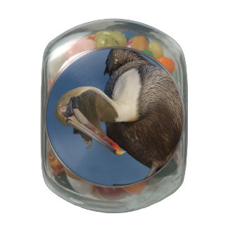 Funny Pelican Glass Candy Jars
