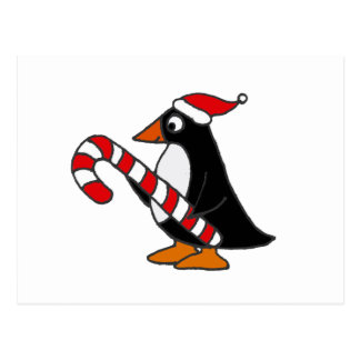 Funny Penguin in Santa Hat holding Candy Cane Art Postcard