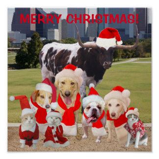 Funny Pets Merry Christmas Poster