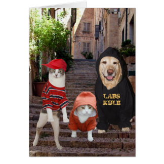 Funny pets Whazup in da 'hood? Greeting Card