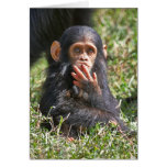 funny picture of young chimpanzee greeting card