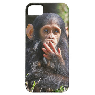 funny picture OF young chimpanzee iPhone SE/5/5s Case