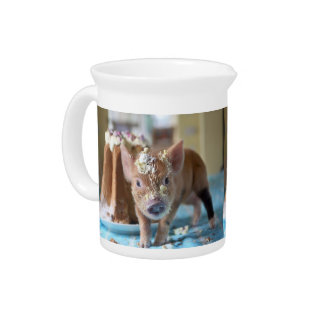 Funny pig and  the cake beverage pitcher
