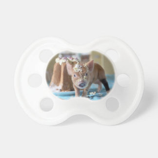 Funny pig and  the cake BooginHead pacifier