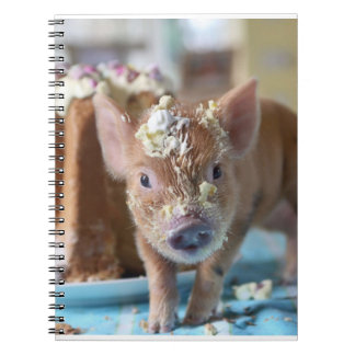Funny pig and  the cake notebook