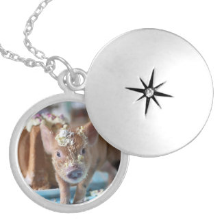 Funny pig and  the cake round locket necklace